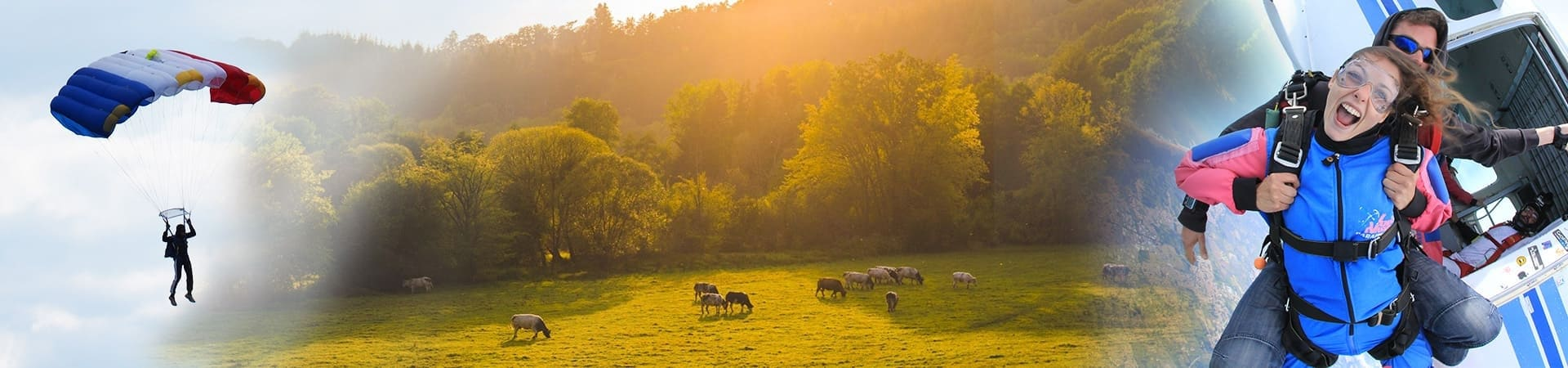 Champagne Ardenne-image